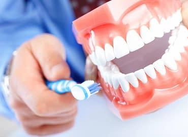 Купить Правила ухода за зубами,Интернет-магазин Freyia.ru (фрейя)