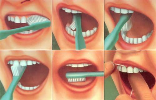 Купить Как правильно чистить зубы ?,Интернет-магазин Freyia.ru (фрейя)