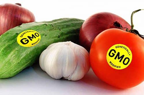 Купить ГМО,Интернет-магазин Freyia.ru (фрейя)