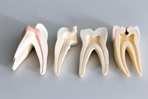 Купить Почему возникает гиперчувствительность зубов ?,Интернет-магазин Freyia.ru (фрейя)