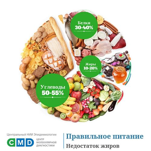 Купить Белки,Интернет-магазин Freyia.ru (фрейя)